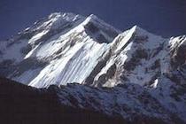 Infoanforderung DANE TROPHY NEPAL