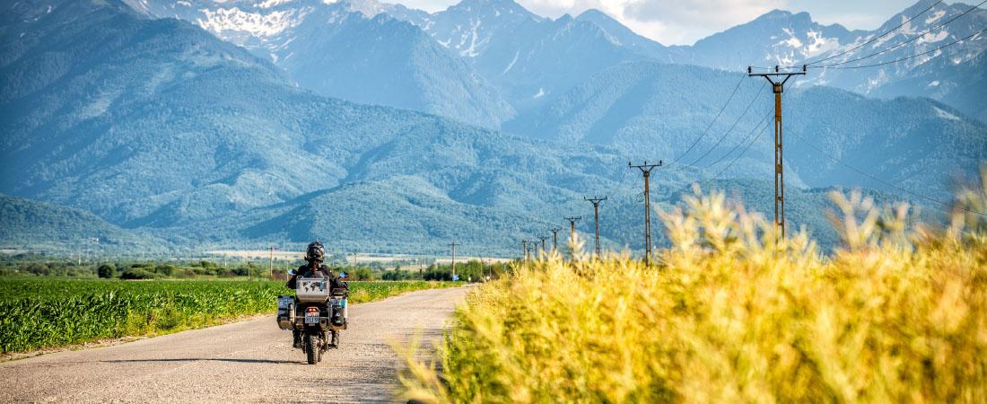 DANE LIHME PRO Motorradhandschuhe Sommer