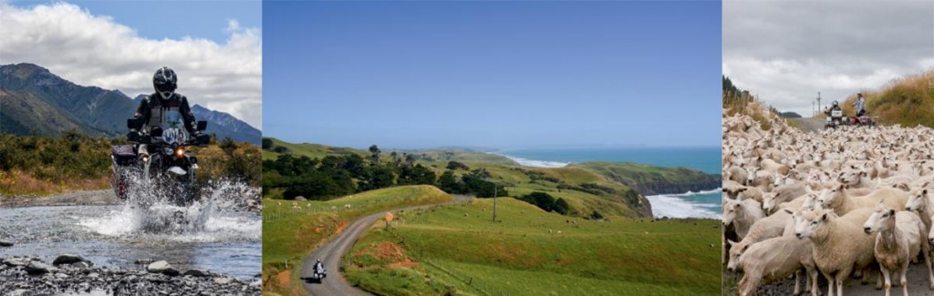 Neuseeland-Dane-02a